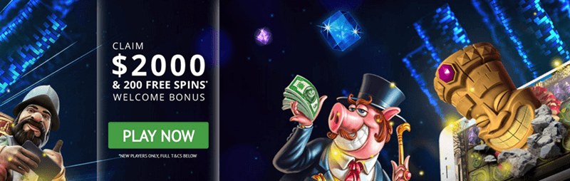 Go Wild Casino App Welcome Bonus
